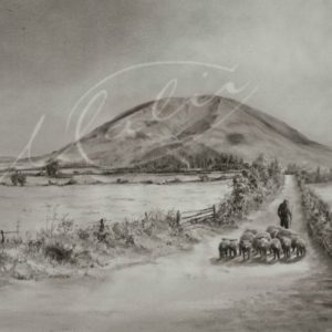 Charcoal Drawing Nephin Mayo